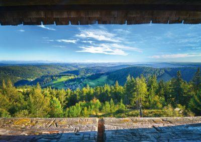 Blick vom Hochkopfturm © Tourist-Information Todtmoos