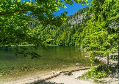 Feldsee © Hochschwarzwald Tourismus GmbH